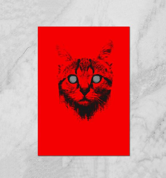 Плакат с изображением Гипнокот цвета Белый