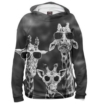 Жирафы в очках