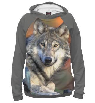 Мужское худи Добрый Волк
