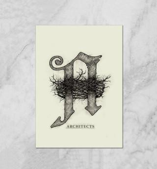 Architects Daybreaker