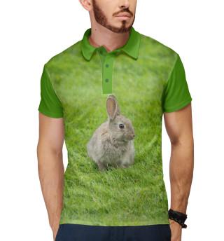Кролик на поляне
