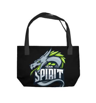 Пляжная сумка Team spirit