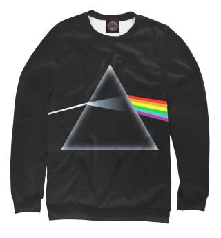 Мужской свитшот Pink Floyd