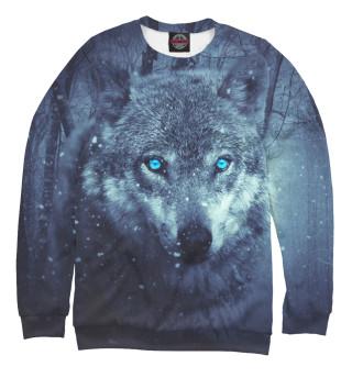 Мужской свитшот Взгляд волка