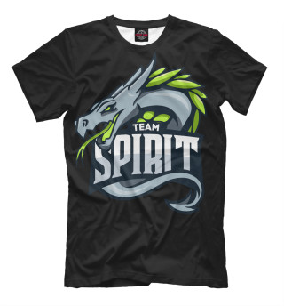 Мужская футболка Team spirit